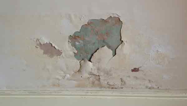 רטיבות בקיר חיצוני בבניין משותף - קיר מתקלף